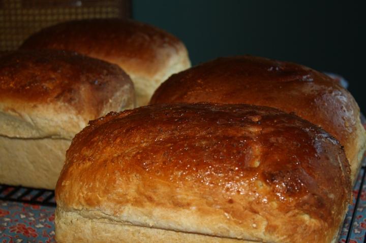 oatmeal sandwich bread loaves